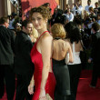 Melina Kanakaredes 2004 Emmy Awards