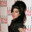 Amy Winehouse's Beehive