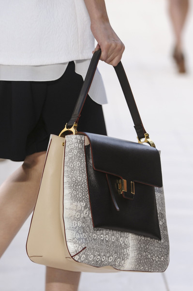 Chloé at Paris Spring 2013 (Details)
