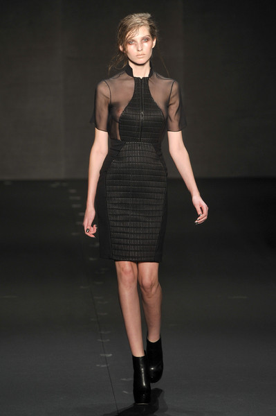 Cushnie et Ochs at New York Fall 2010