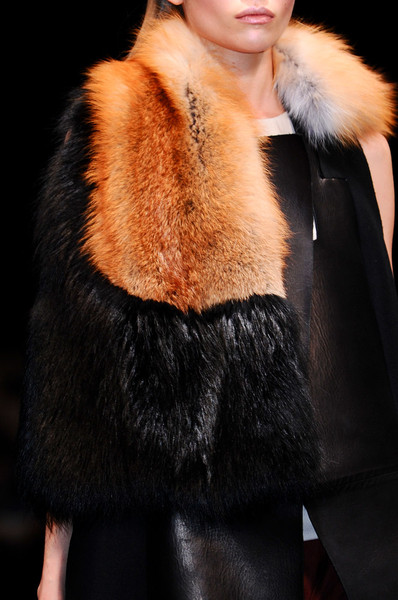 Sharon Wauchob at Paris Fall 2012 (Details)