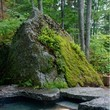 Blend nature with your own backyard design