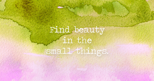 Find beauty in the small things.