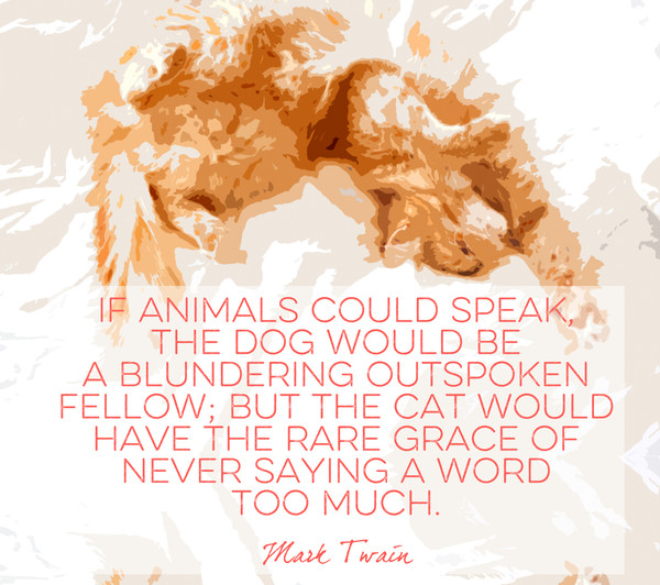 Words by Mark Twain - Quotes That Will Melt Every Animal ...