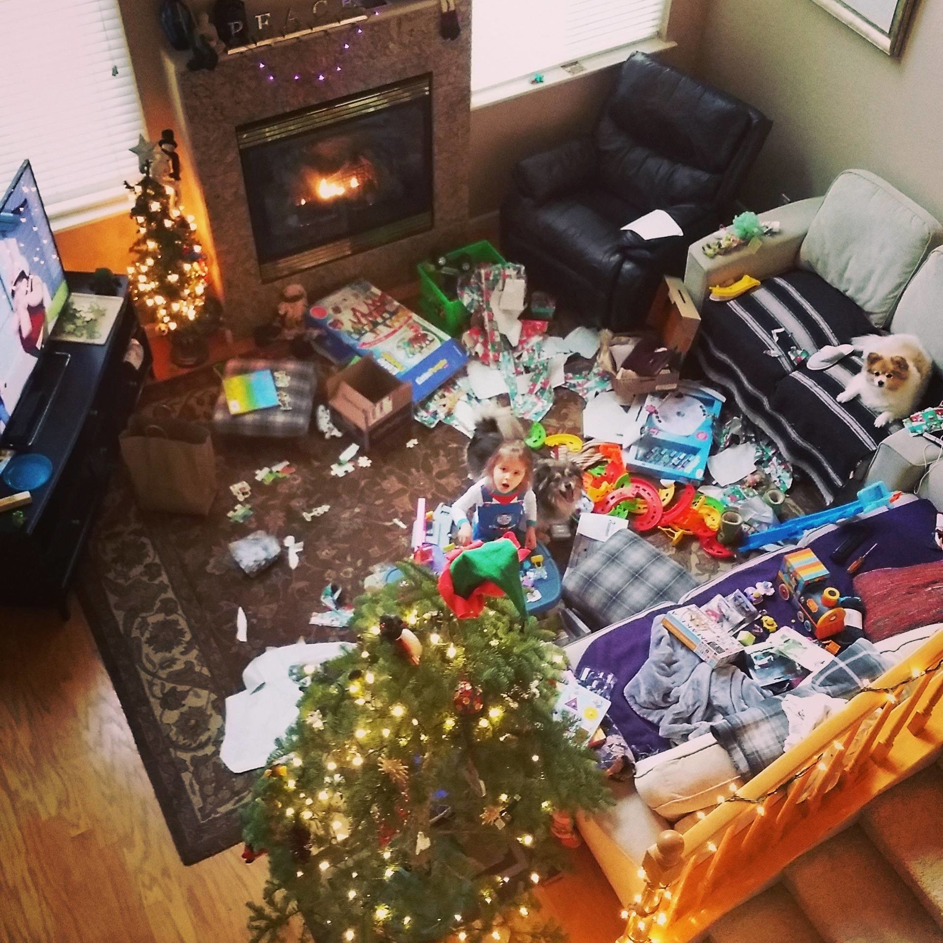 This may be my living room on Christmas morning but it would be a lie to say it doesn't look like this at other times, too.