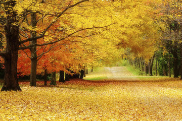 The 13 Worst Things About Fall