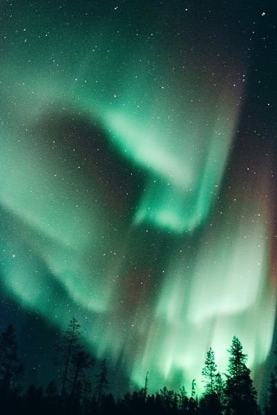 Northern Lights In Chena Hot Springs Resort