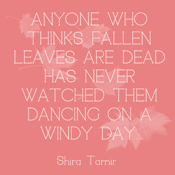 Anyone who thinks fallen leaves are dead has never watched them dancing on a windy day. - Shira Tamir