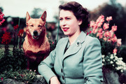 The Iconic Photo Of Queen Elizabeth II From Every Year She's Been Queen