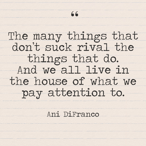 """The many things that don't suck rival the things that do. And we all live in the house of what we pay attention to."" - Ani DiFranco"
