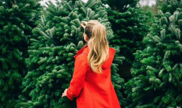 Genius Hair Hacks from the Pros To Try This Holiday Season