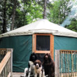 Maine Forest Yurts, Maine
