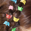 Collecting Butterfly Clips