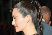 Emmy Rossum Long Braided Hairstyle